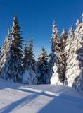 Zima piękny krajobraz Obrazy Royalty Free