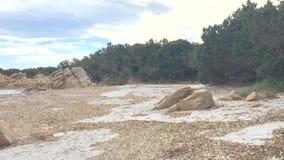 Zima piaska plaża z granitu seagrass i skał lataniem wokoło zbiory wideo