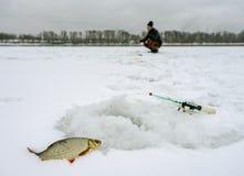 Zima połów, złapany płoci lying on the beach obok dziury w tło rybaku zginał nad dziurą zdjęcie stock