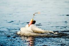 Zima połów na morzu jaskrawy słońce Obrazy Stock