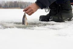 Zima połów Fotografia Stock