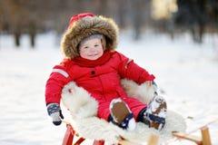 Zima portret berbeć Obraz Royalty Free