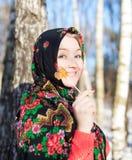 Rosyjska zima Zdjęcie Stock