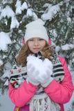 Zima portret w drzewach Zdjęcie Stock