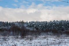 Zima przychodzi Obraz Royalty Free
