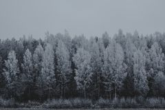 Zima przychodzi lukrowy morze Nic bije skały obrazy stock