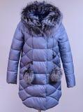 Zima puszka kurtka odizolowywająca na popielatym tle Siwieje puszek kurtkę z lisem na atrapie bez twarzy outerwear Obraz Royalty Free