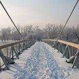 Zima ranek na śnieżystym zwyczajnym moscie Obraz Stock
