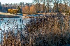 Zima ranek rzeką Zdjęcie Royalty Free