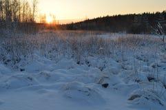 Zima ranku słońce przy świtem nad lasową krawędzią las Obrazy Royalty Free