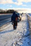 Zima rybak iść łowić Zdjęcia Royalty Free