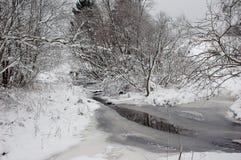 Zima rzeką Zdjęcie Royalty Free