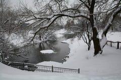 Zima rzeką Fotografia Stock