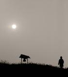Zima słońce fotografia stock