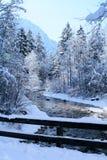 Zima scena   Zdjęcia Stock