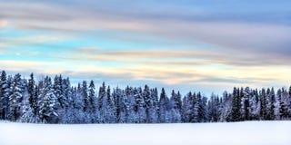 zima scenerii Zdjęcia Stock