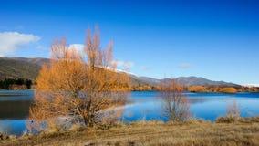 Zima sceniczna brzeg jeziora Zdjęcie Royalty Free