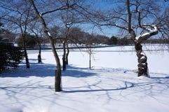 Zima Sceniczna przy Pływowym basenem zdjęcie royalty free