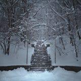 Zima schodki Zdjęcia Royalty Free