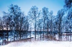 Zima sezonowy krajobraz zdjęcie royalty free