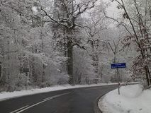 Zima sezonu klimatu wakacji nowego roku karnawału śnieżny mors Zdjęcia Royalty Free