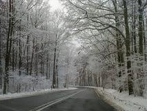Zima sezonu klimatu wakacji nowego roku karnawału śnieżny mors obrazy stock