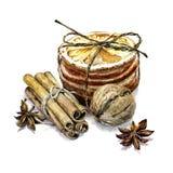 Zima skład cynamon, orzech włoski i wysuszone pomarańcze, royalty ilustracja
