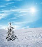 Zima snowfall Obrazy Royalty Free