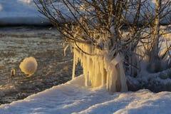 Zima sopel na jezioro michigan zdjęcia stock