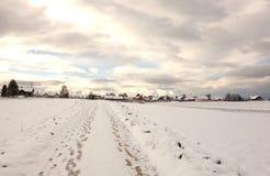 Zima spacer miasteczko Obraz Royalty Free
