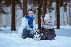Zima spacer z husky obrazy royalty free