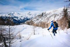 Zima sport: mężczyzna narciarstwo w prochowym śniegu Obrazy Stock
