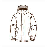 Zima sporta kurtka odizolowywająca na bielu. Zdjęcia Royalty Free