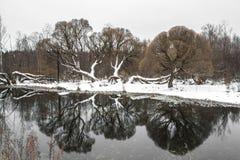 Zima staw Zdjęcie Stock