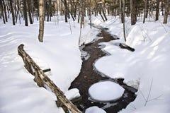 Zima strumień Zdjęcia Royalty Free