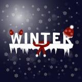 Zima tekst Płatek śniegu nocy tło Fotografia Stock