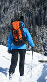 Zima trekking Obraz Royalty Free
