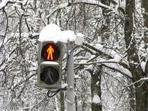 Zima, ulica, światła ruchu dla pedestrians, czerwień, przerwa zdjęcie royalty free