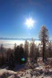 Zima w Altai górach Zdjęcie Royalty Free