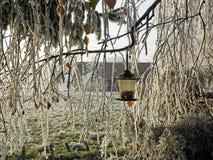 Zima w Chorwackiej wsi, szczegóły, 1 Obraz Stock