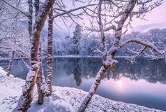 Zima w dolinie po śniegu fotografia stock