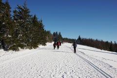Zima w góra ślązaka regionie zdjęcia stock