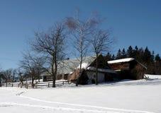 Zima w góra ślązaka regionie obrazy royalty free