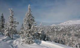 Zima w górach -006 Obrazy Royalty Free