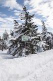 Zima w Harz Zdjęcie Royalty Free
