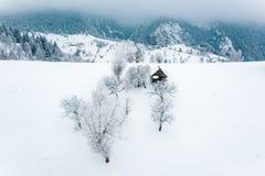 Zima w Karpackich górach w Sirnea wiosce blisko otręby, Brasov i Sinaia w Rumunia, zdjęcia stock