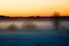 Zima w Lithuania Obrazy Royalty Free