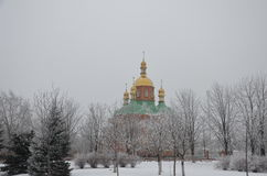 Zima w parkowym terenie obrazy stock