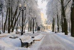 Zima w parku Obrazy Stock