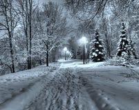 Zima w parku Obrazy Royalty Free